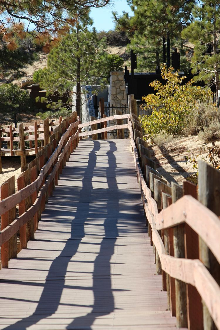 woodenpathway, wood, bridge, walkway - phoenixk | ello