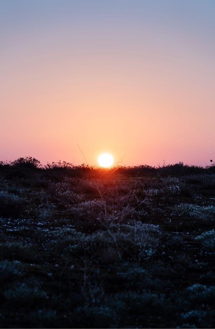 Sunrise Wasteland – Times - land - oliviermorisse | ello