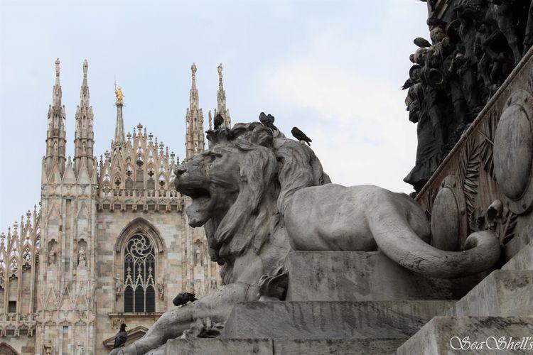 Guardians Duomo, Milan, Italy - streetphotography - irseashell | ello