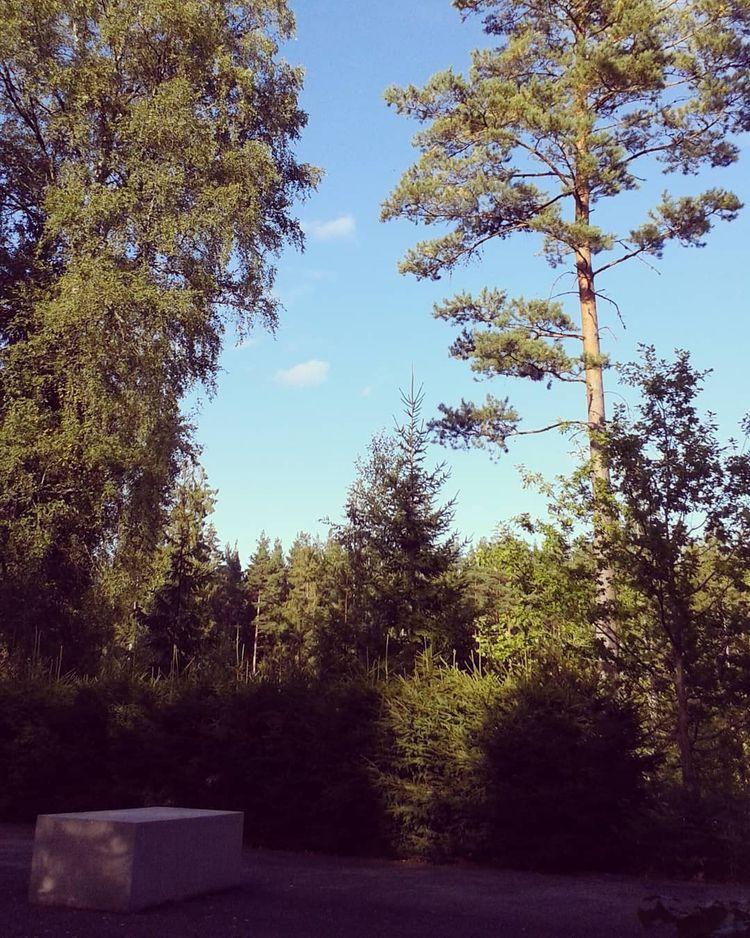 På ceremoniplatsen för muslimer - skogskyrkogardar | ello