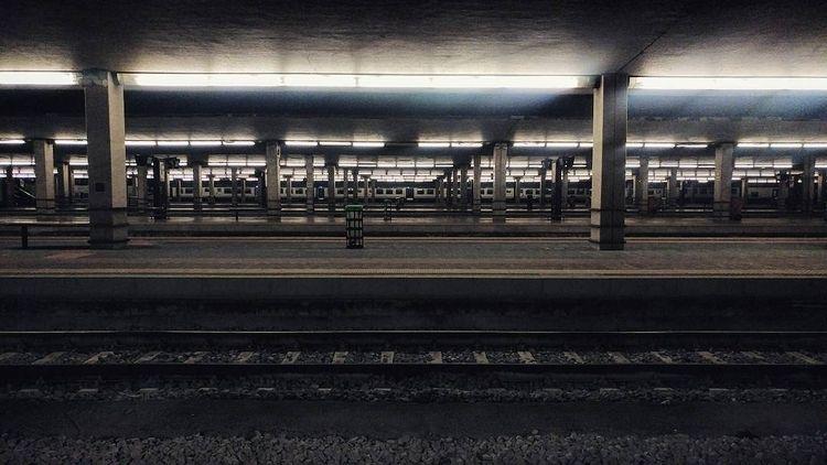 tracks, trains - gepetdo | ello