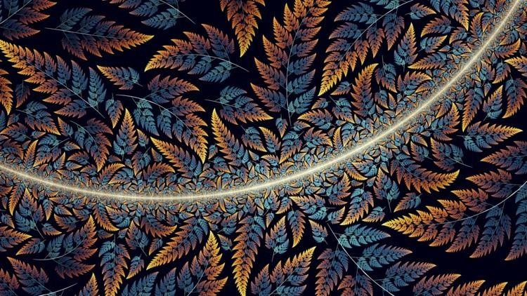 Ferns - apophysis, chaotica, fractal - tatasz | ello