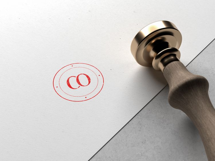 CO Company // Stamp design - logo - sinterclaas | ello