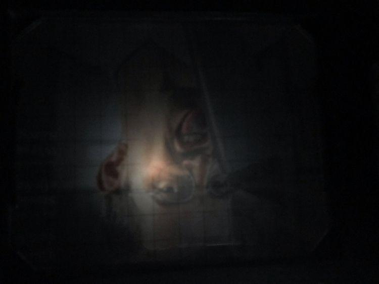 Tests mit der Grossformatkamera - royfocke | ello