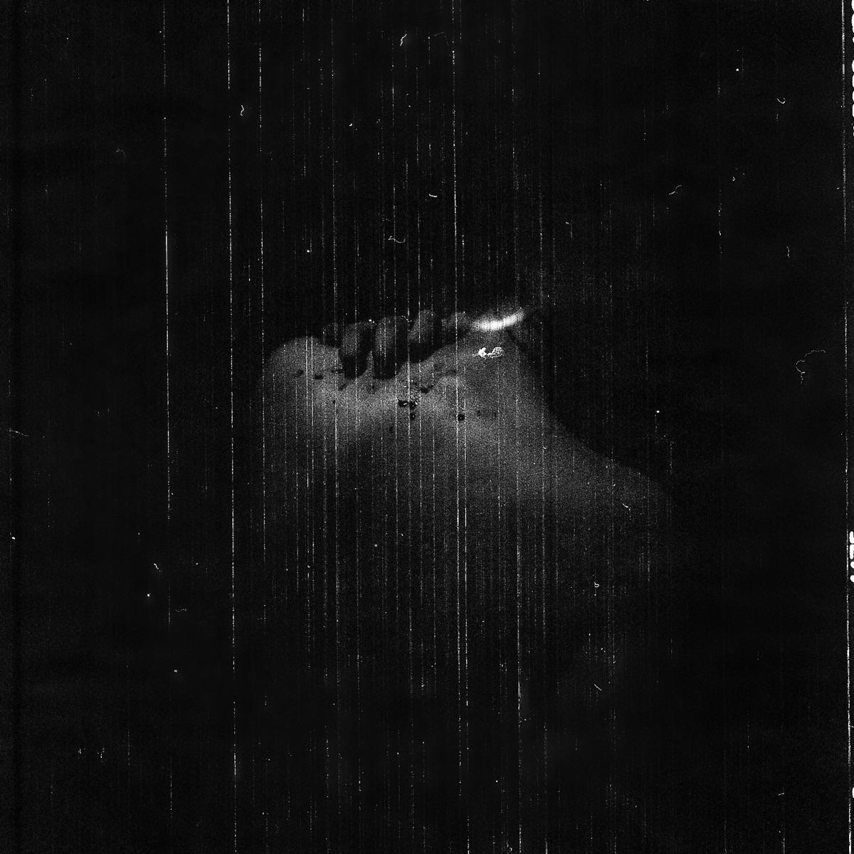 wisteriasuspiria Post 02 Dec 2018 01:14:45 UTC | ello