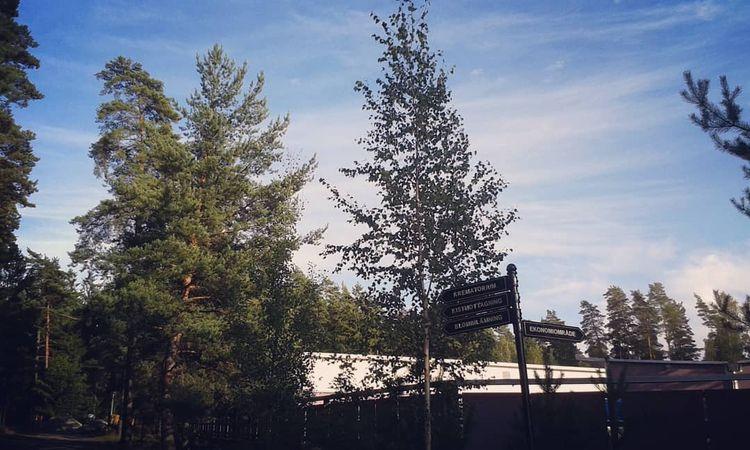 Ekonomiområdesbyggnader Hovshag - skogskyrkogardar | ello
