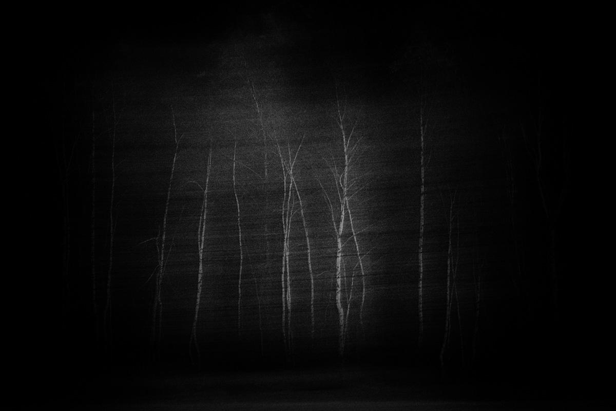 birken multiple exposure photog - heinzinnerhofer | ello