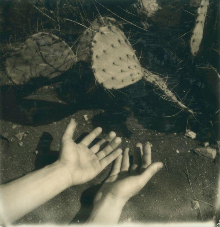 Moon Cleansing Rituals - canischromatis | ello