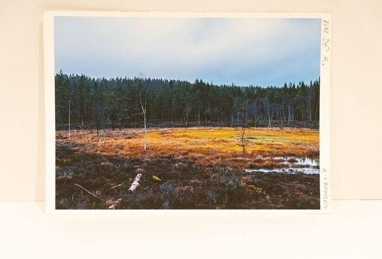 edition print 1/25 Nordmarka, N - jonassjovaag | ello