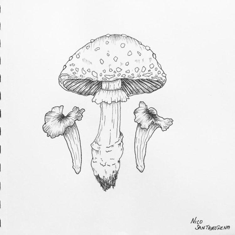 Inktober sketches - ink, penandink - nicosantamorena | ello
