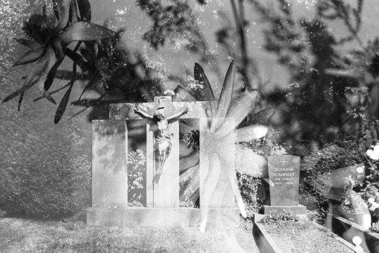 Film Collaboration: Walter: Ger - baxtus | ello