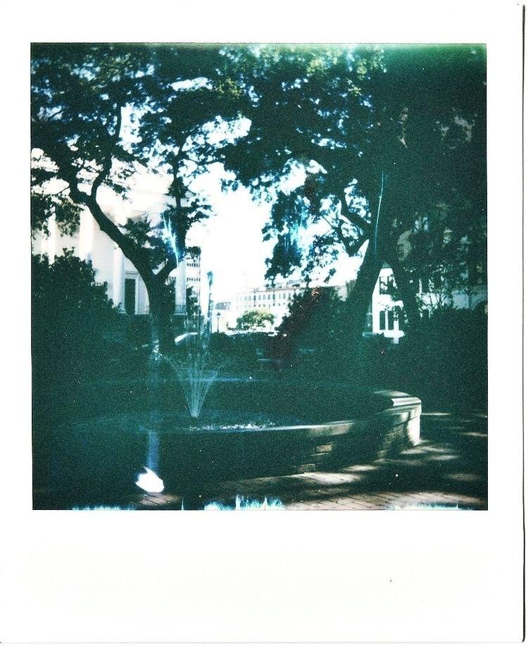 photography - Polaroid, savannah - undressedlunch | ello