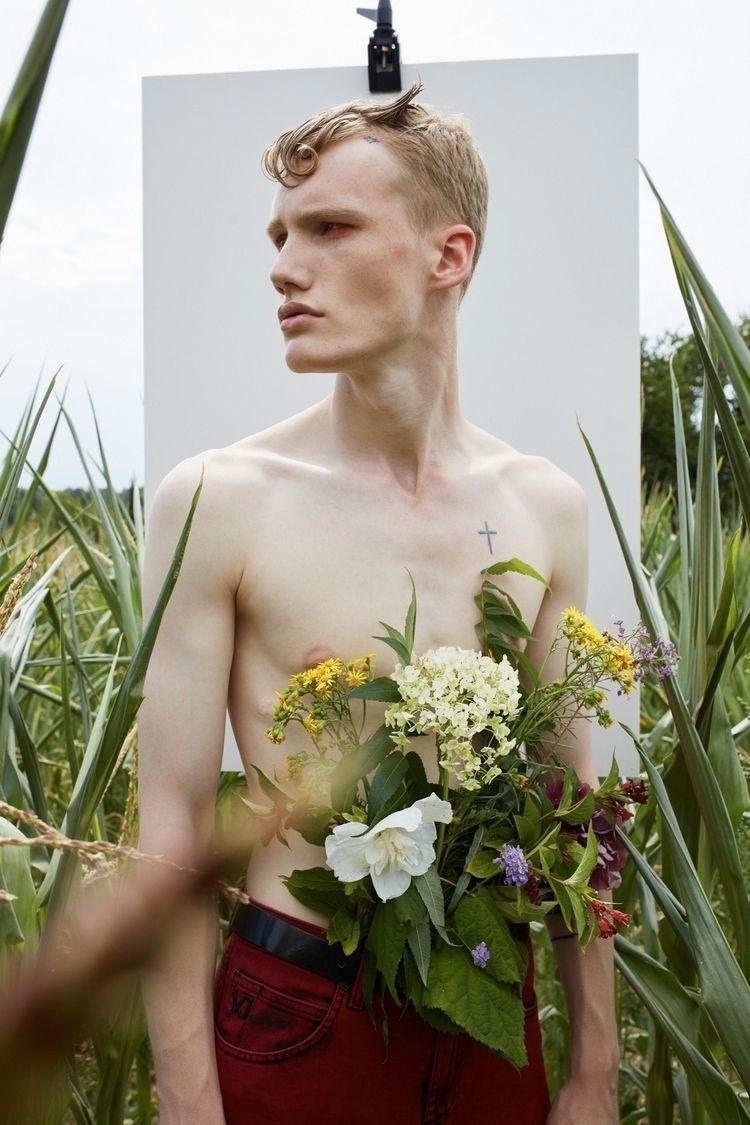 fusion orchids, petals daring p - ashirovmartic | ello
