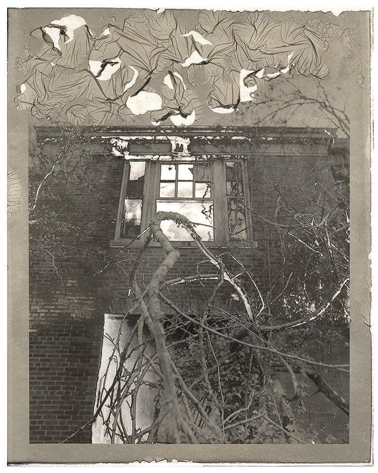 Decayed Emulsion..#darkroom - silvergelatin - brianhenry | ello