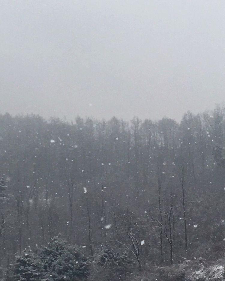추억들이 귀환하는 계절 하얀 눈으로 매서운 바람으로 - linfilm | ello