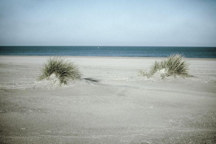 photography, beach, life, landscape - loyph   ello