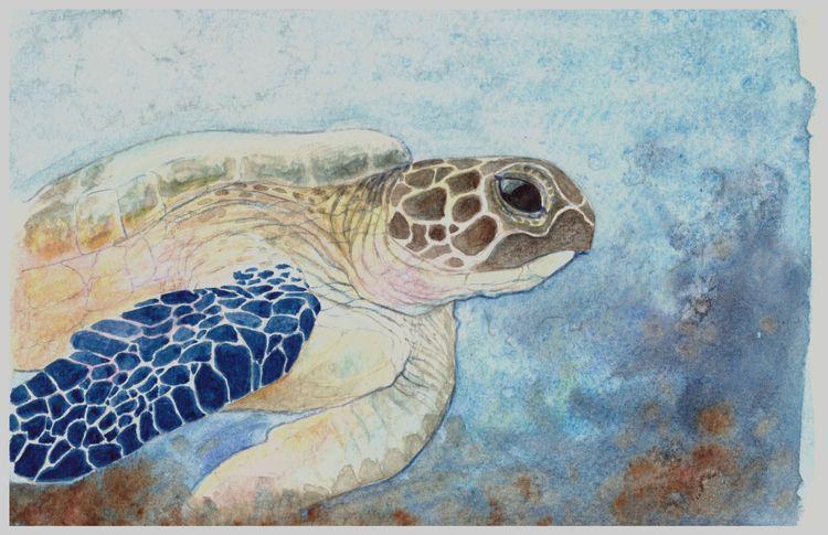 watercolor, shjiza, paint, brush - shjiza | ello
