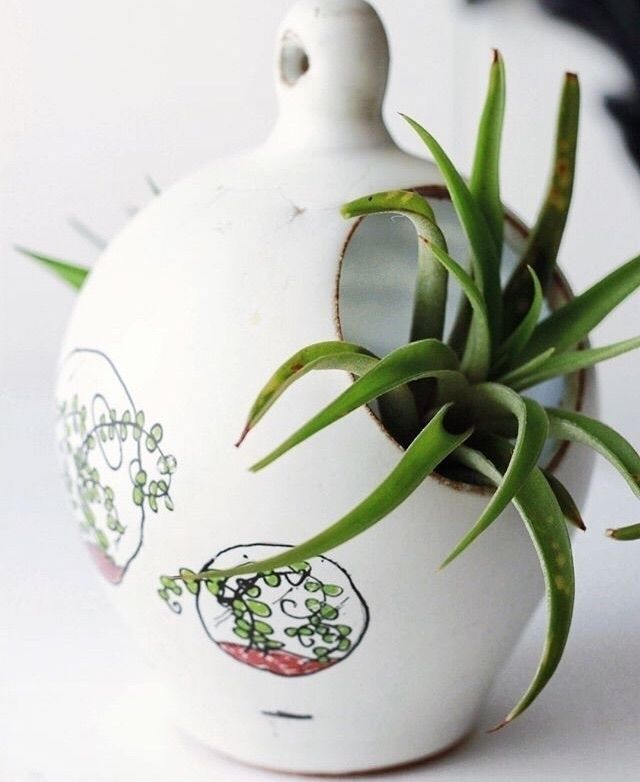 salt pot converted air planter  - chrisswazie-ceramics | ello