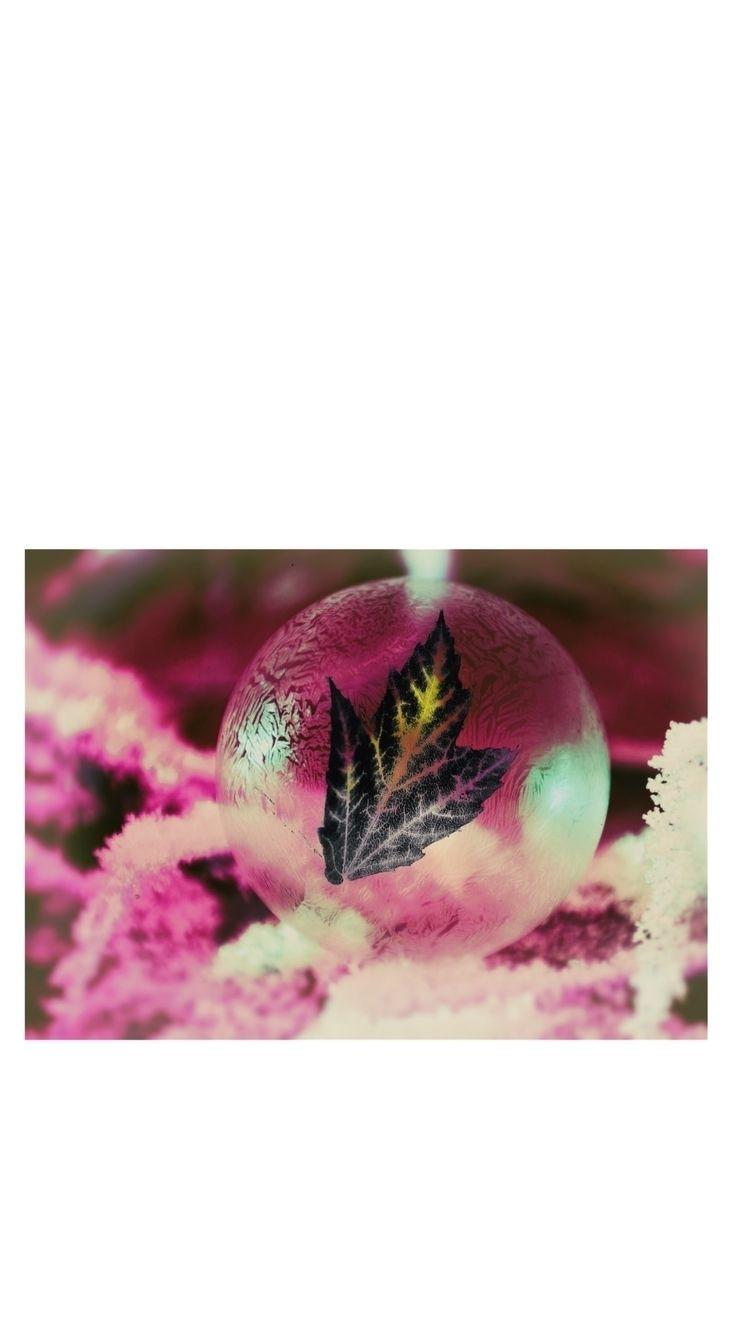 remember fragile leaf. colors b - bez0802 | ello