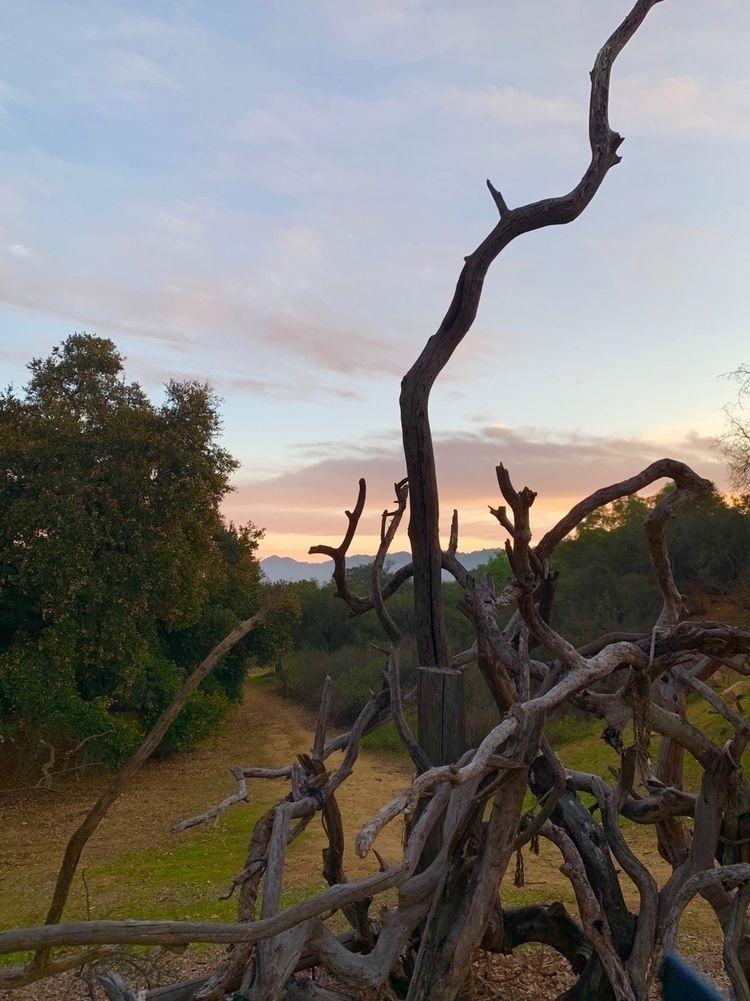 Topanga, California - sunset - slubdude | ello
