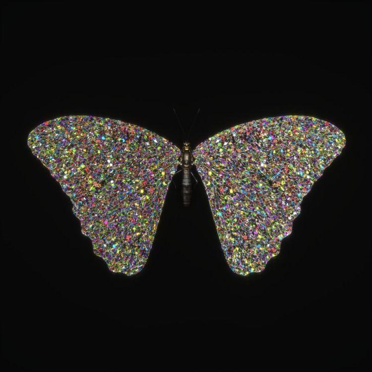 Papillon - 3D, butterfly, digital - z3rogravity | ello