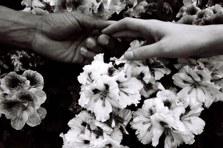 Santuario - 35mm, film, analog, blackandwhite - noeangelito | ello