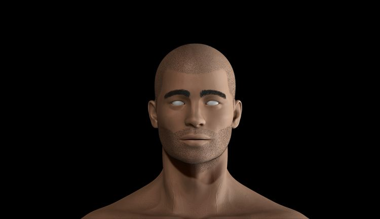 Realistic Male Sculpting - High - xwhn | ello