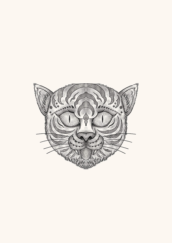 Cat  - heymikel | ello