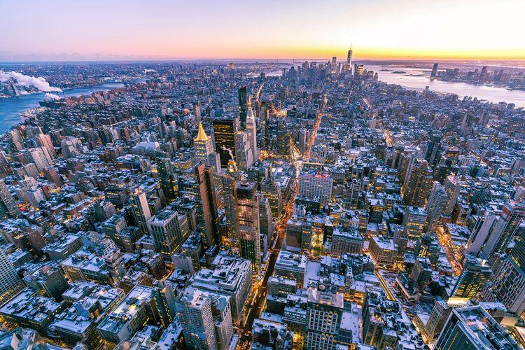 blood lines usa / 2018 - newyork - benjamintwo | ello