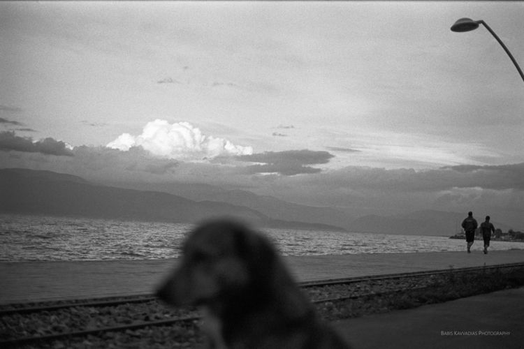 analog, film, analogphotography - bampgs | ello