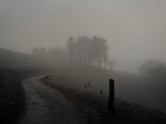 Fog - Iphone, iphoneography, iphoneonly - itsrichardjohnson | ello