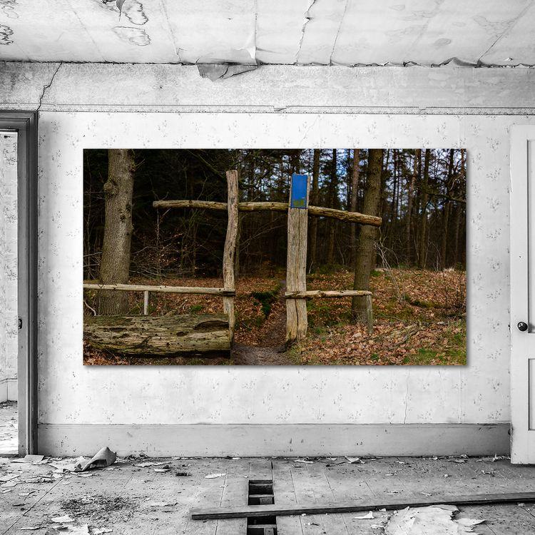 Enter forest 🛒 --&gt - arc1, buyphotography - arc1 | ello