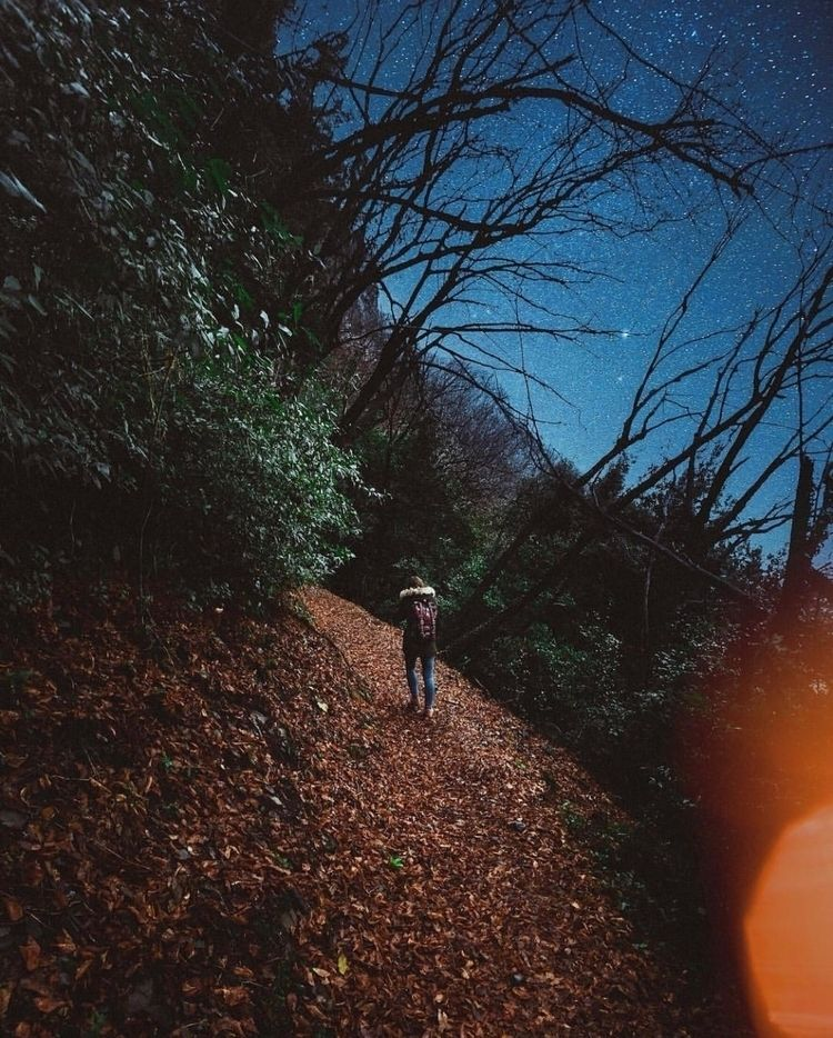 Nature wears colors spirit!  - forest - nick_asphodel | ello