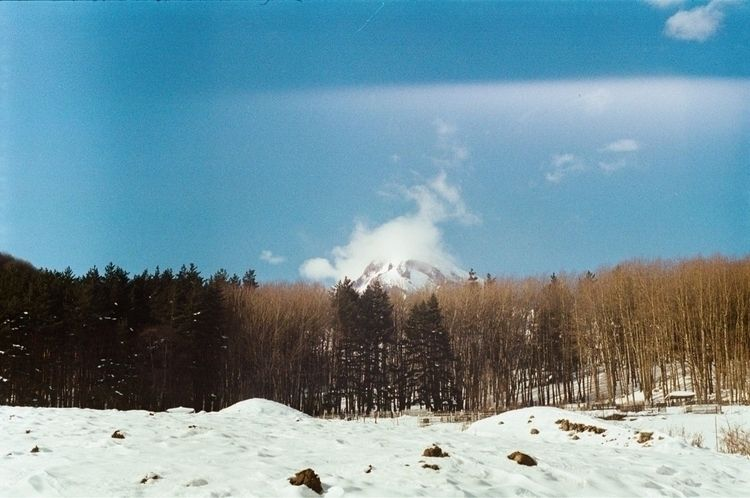 Mount Kazbek (5047m) 2018 - analog - tatao | ello