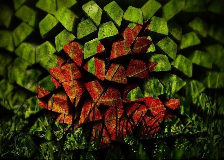 Wonderful maple leaf combined l - abilityofart | ello