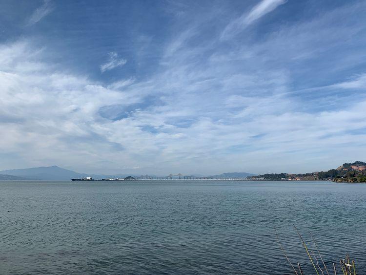 pointrichmond, ferryterminal - phoenikx   ello