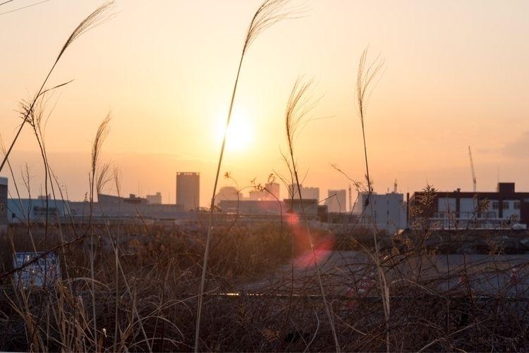 Good morning Tokyo | - nikon, japan - phototkh | ello