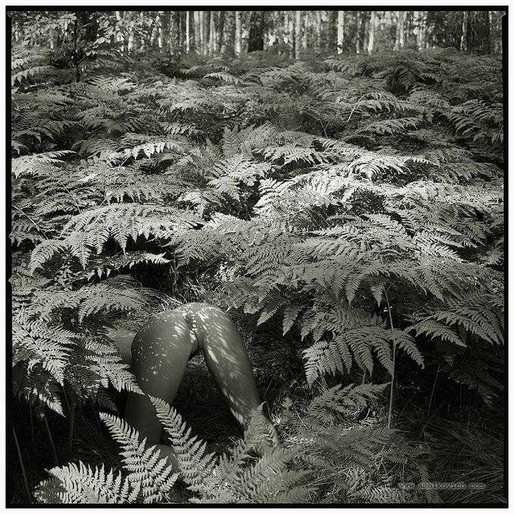 forest, jungle, naked, ass, hidden - ukimalefu | ello