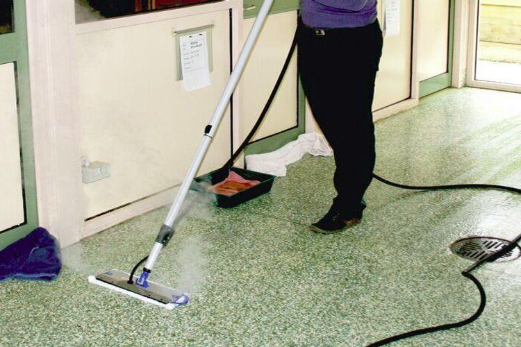 professional vet cleaning remov - gadgetany   ello