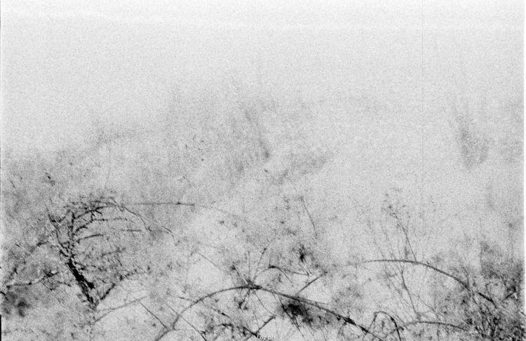 washi film noirblanc - soul, analogue - loyph   ello