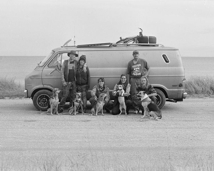 kids dogs '77 Dodge van, 2018,  - saeger | ello