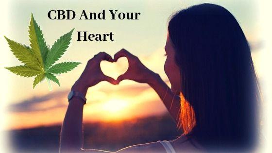 CBD Heart interact cardiovascul - cbdlot | ello