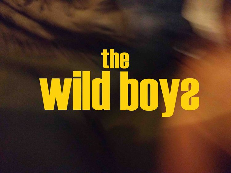 wild boys Continuing series ins - johnhopper | ello
