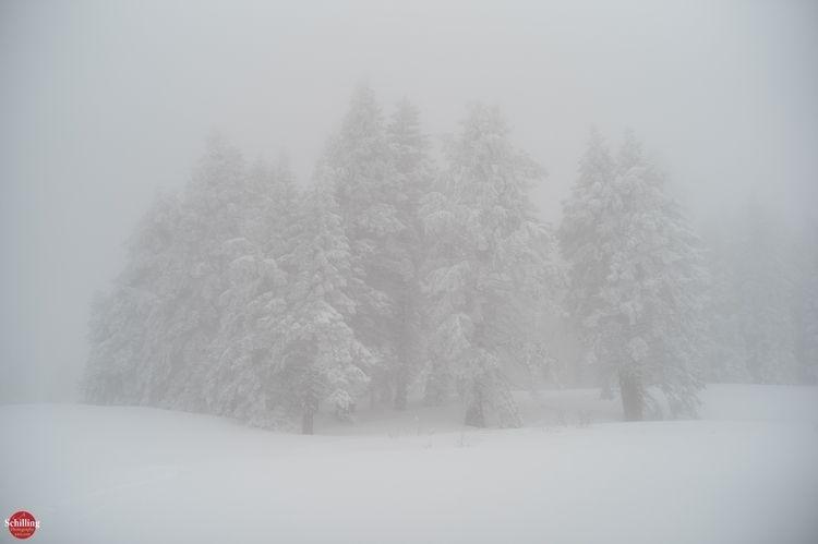 Atmospheric Impression; Snow Fo - augustschilling   ello