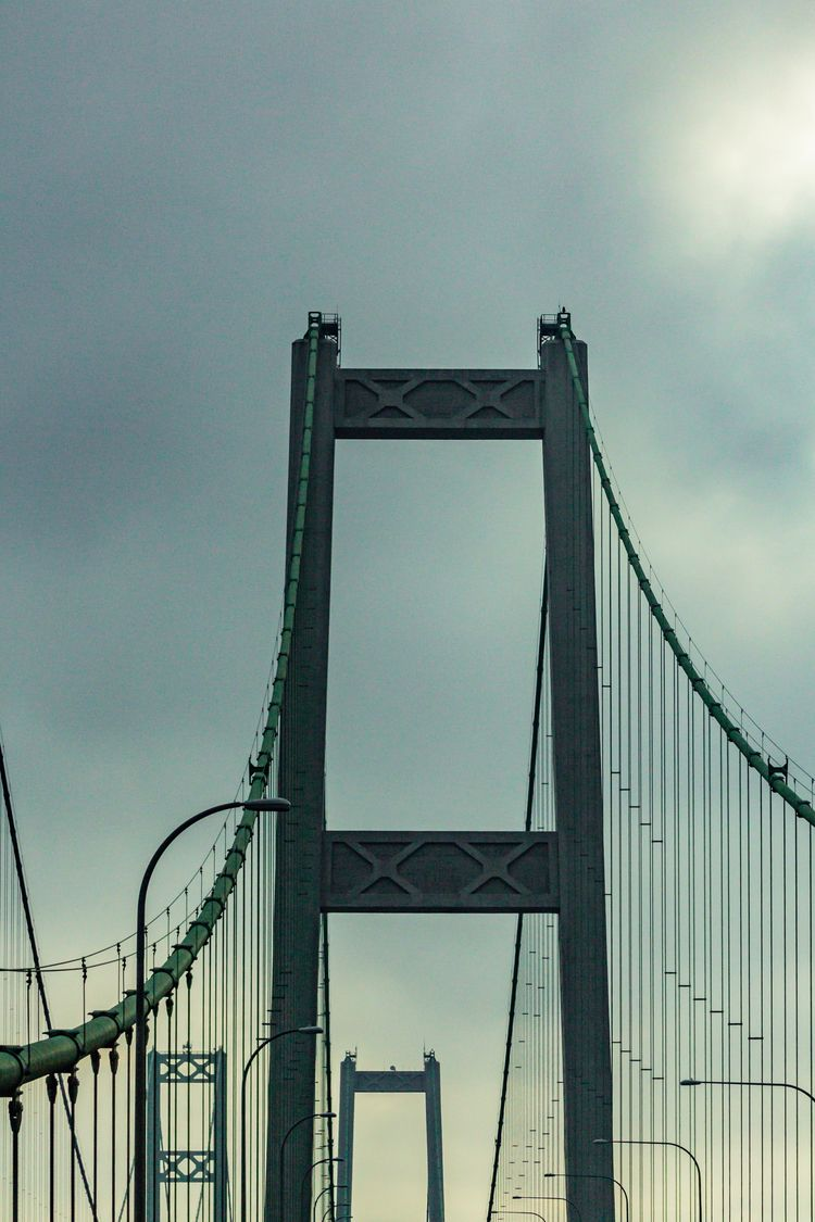 Support Tacoma Narrows Bridge,  - davidseibold   ello