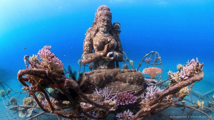 Enjoying scuba diving Bali evok - atlantisbalidiving | ello