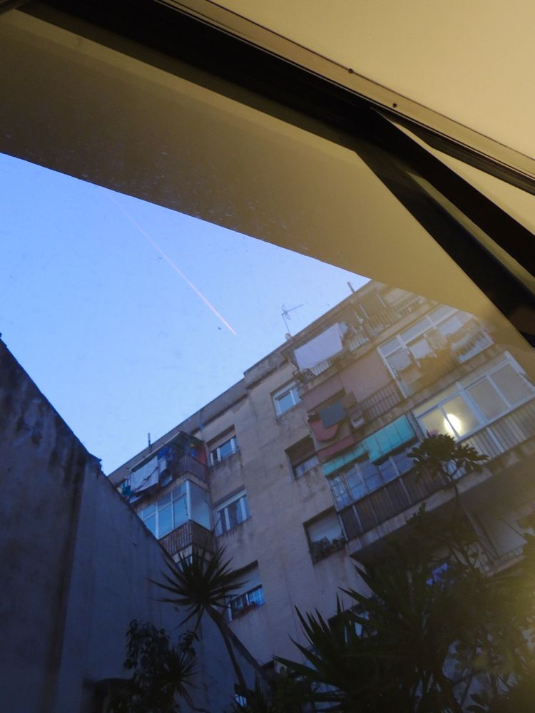 *chilling Barcelona - sunset, palmtree - noemilzn | ello