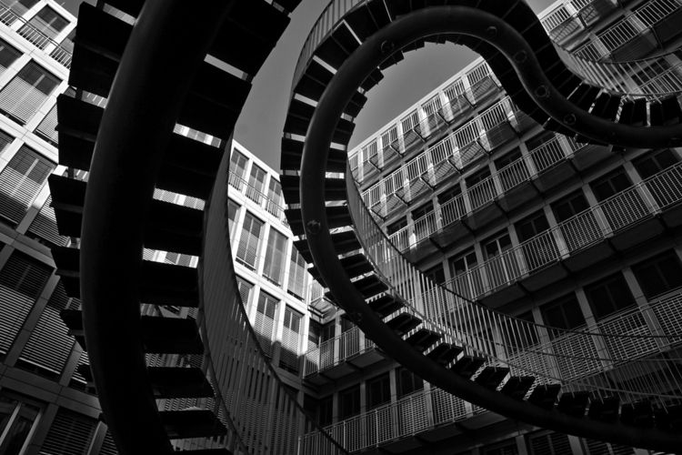 city, octopus, architecture, monochrome - obscure63 | ello