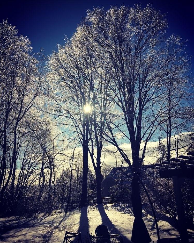 ice, sunshine. - thatusernameistaken | ello