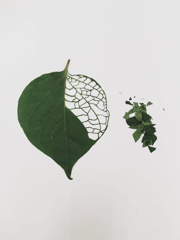 quando folha vira arte!  - papercut - bluberryatelier | ello